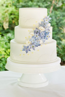 Delphinium-Wedding-Cake-21