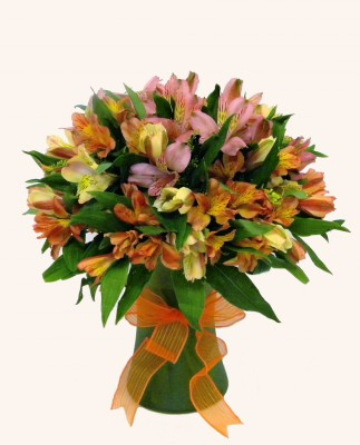 alstroemeria-bouquet-cool