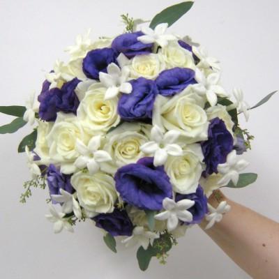 lavendar-purple-20