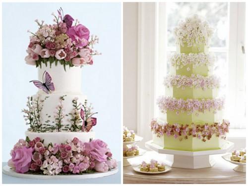 new-sylvia-wei56-cakes