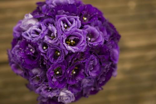 purple-lisainthus03