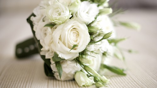 white-ros-1411