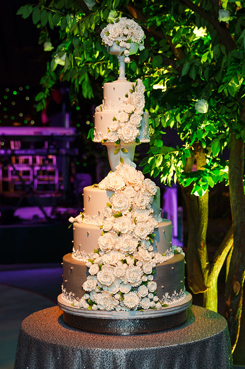 cake01-2013-11-16_detail